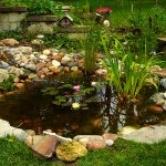 Bahçede bir süs havuzu için ne yapmak gerekir?